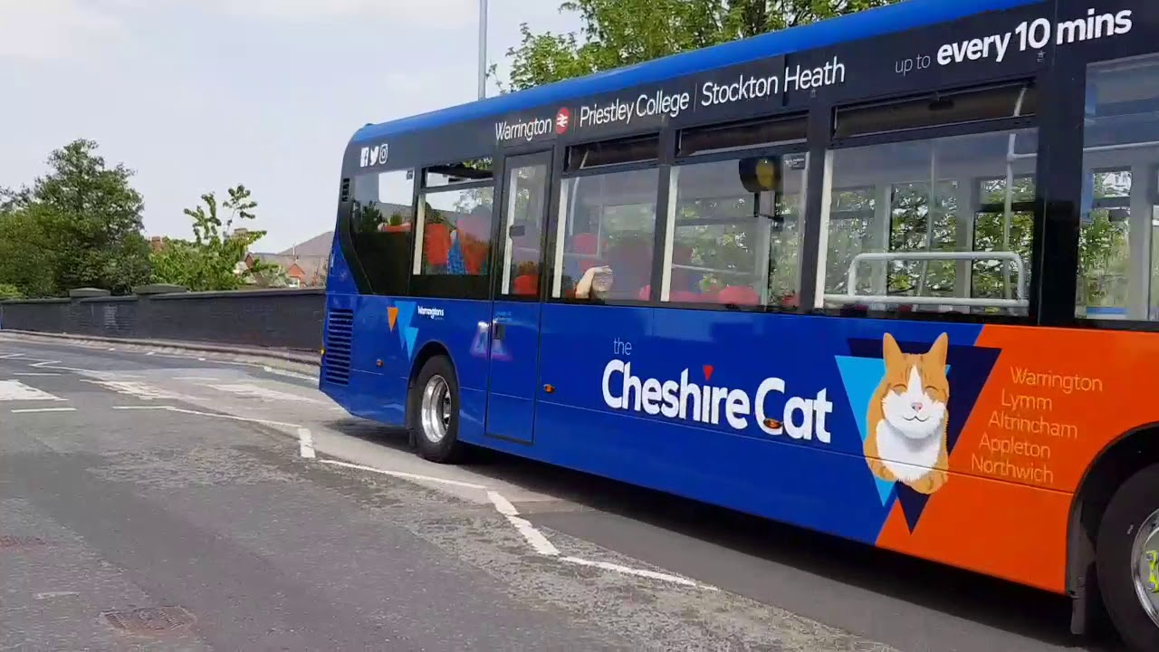 Image of Cheshire Cat bus